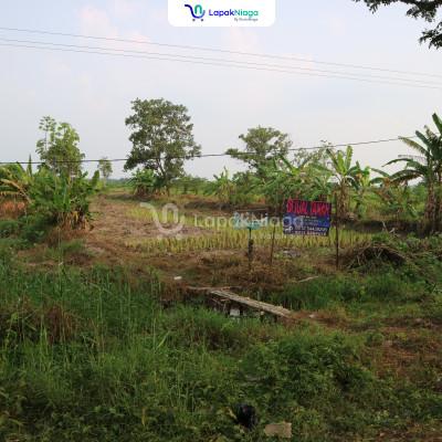 Jual 2 bidang tanah lokasi di Kuala Kapuas